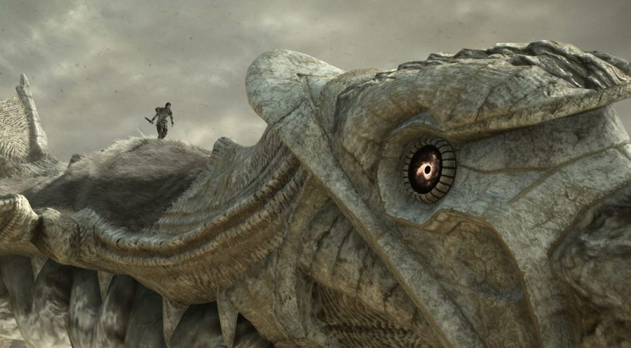 Shadow of the Colossus PS4 Screenshot Review Test