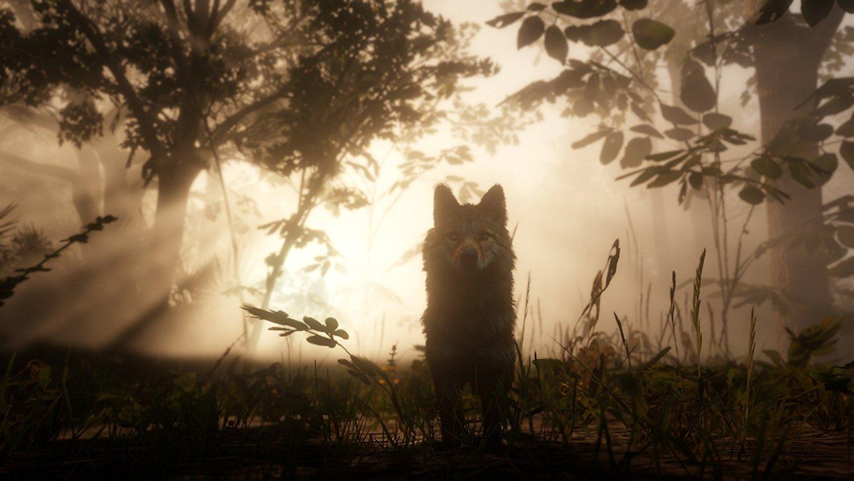 Red Dead Redemption 2 RDR 2 PS4 Pro Xbox One X Review Test Kritik Jagd Arthur Morgan Dutch Van der Linde Western Wild West
